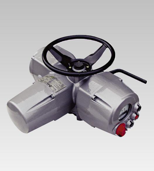 Biffi Icon 2000 Electric Actuator